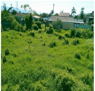 Terreno Lote à Venda, Perequê Mirim - Caraguatatuba/SP